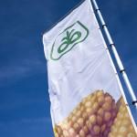Jornadas Pioneer 2014 – Bandera principal