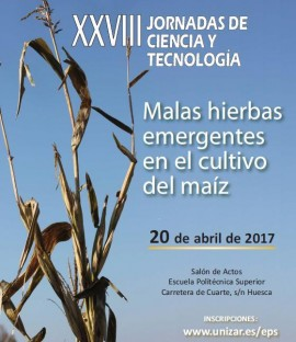 Cartel XXVIII Jornadas Ciencia y Tecnología