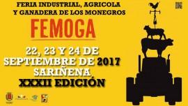 Cartel de FEMOGA 2017