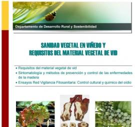 """Cartel curso en """"Sanidad vegetal en viñedo"""""""