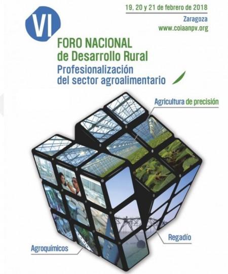 Cartel VI Foro Desarrollo Rural